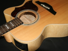 Takamine G Series 12 String
